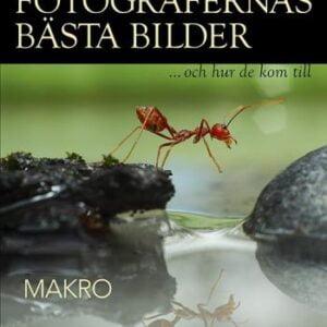 Fotografernas Bästa Bilder - Makro