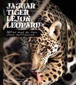 Jaguar, Tiger, Lejon, Leopard - Möten Med De Fyra Stora Kattdjuren